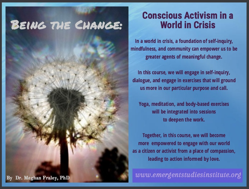 Being the Change Fraley ESI 2016